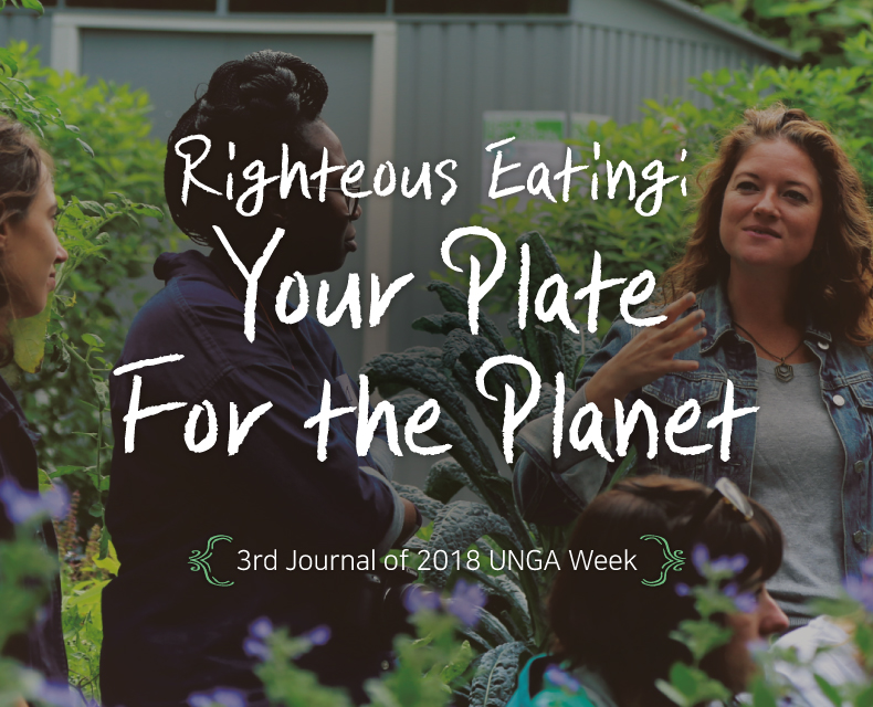 Your Plate For the Planet